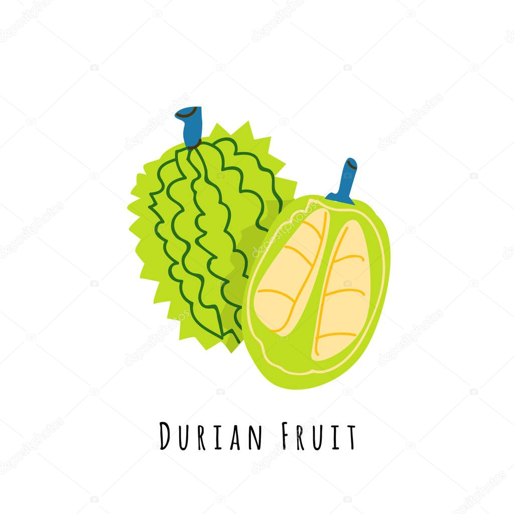 durian fruit flat vector illustration cartoon slices of exotic tropical fresh fruit clipart with typography isolated icon for healthy cooking menu logo design element premium vector in adobe illustrator ai durian fruit flat vector illustration