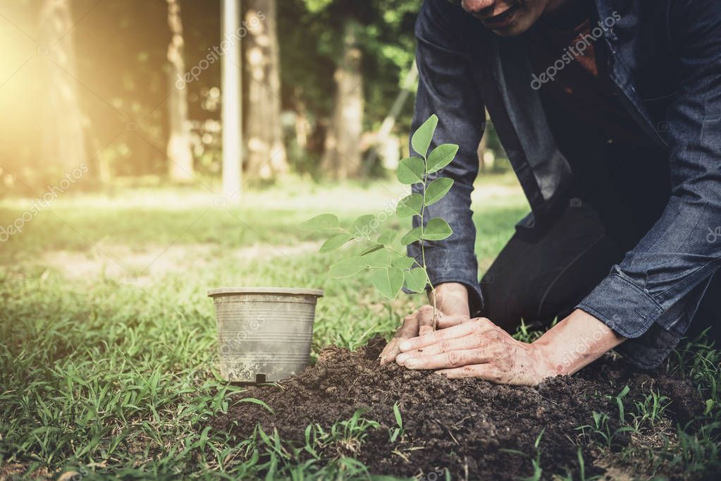 Young man planting the tree in the garden as earth day and save world concept, nature, environment and ecology.