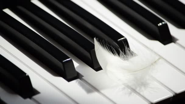 Közeli zongora billentyűzet és repül el fehér toll. A kreativitás és az inspiráció fogalma