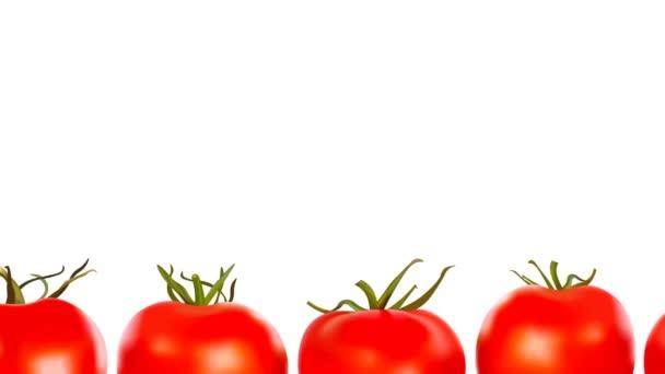 Nekonečná řada červených čerstvých šťavnatých zralých rajčat na bílém pozadí. Bezproblémová animace s kopírovacím prostorem. Reklama na rajčatovou omáčku nebo kečup nebo jakékoliv ekologické farmářské potraviny