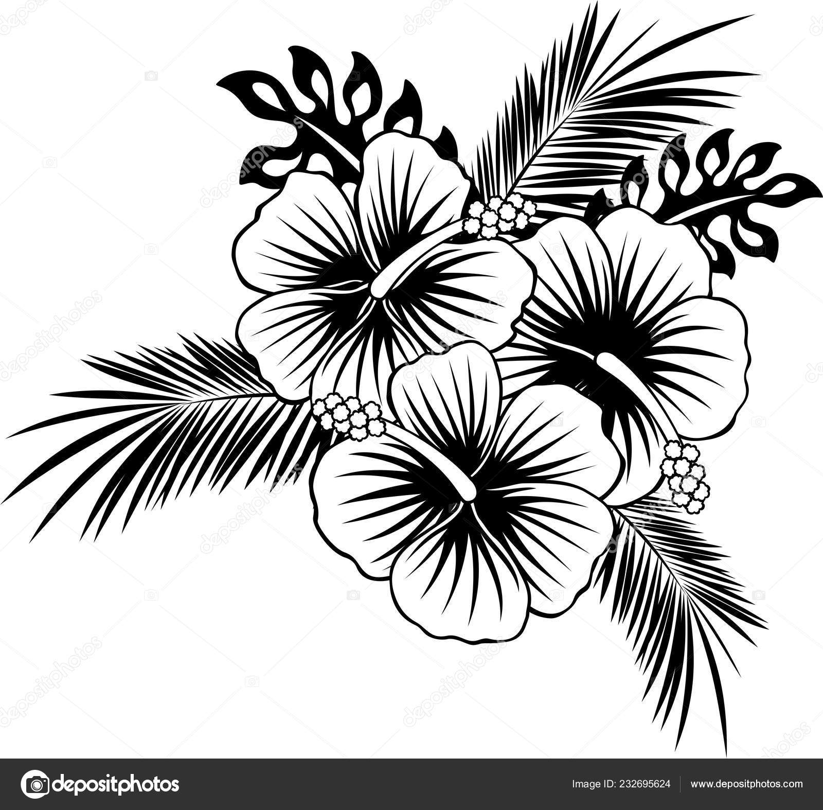 Hibiscus Flowers Tropical Leaves Black White Stock Vector