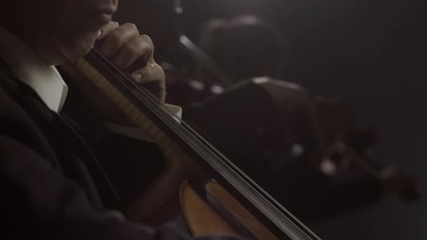 Cellist performing in the philharmonic orchestra