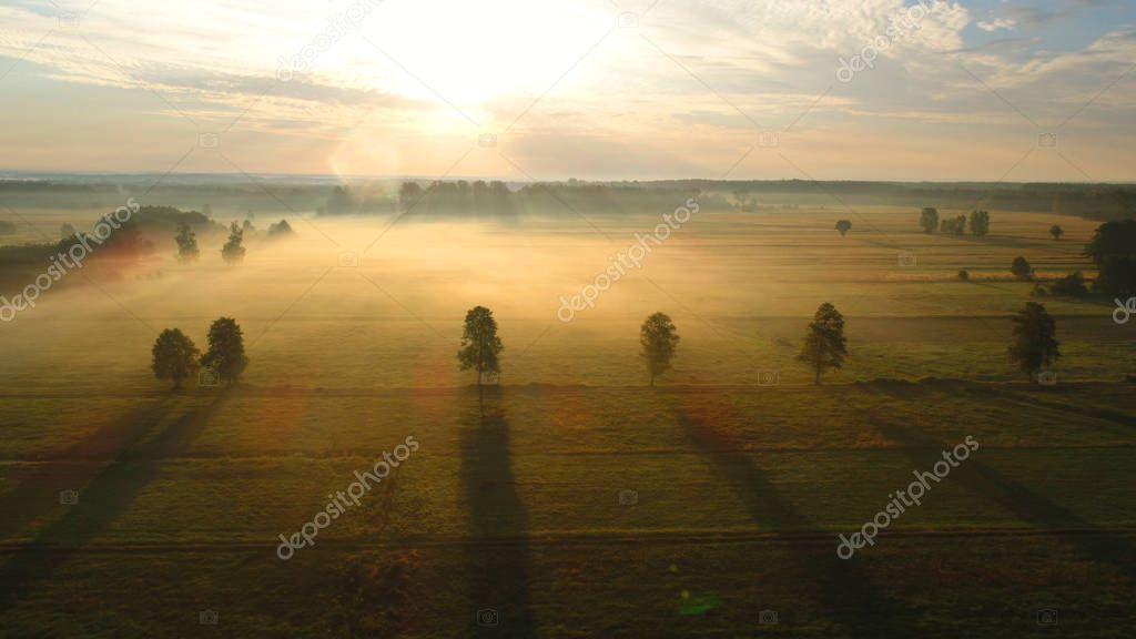 Beautiful aerial landscape with fields and forest