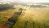 Fotografie Krásné vzdušné krajina s pole a Les