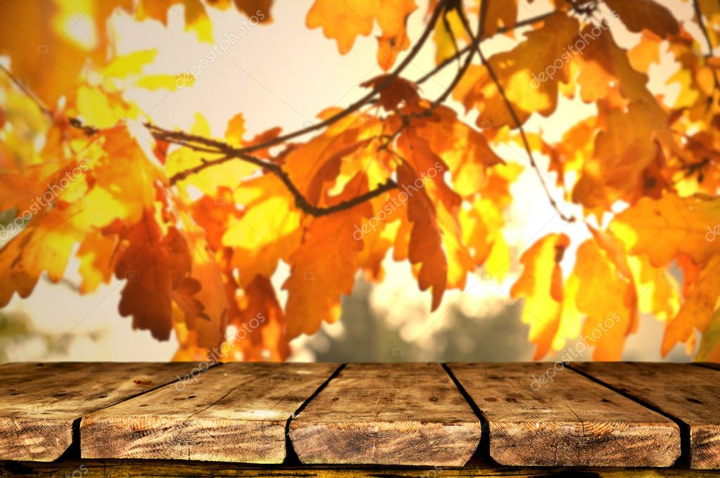Empty wooden table with autumn background