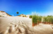 Desert landscape, Slowinski National Park near Leba, Poland