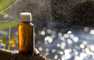 Naturopathy - essential oils and medical herbs.