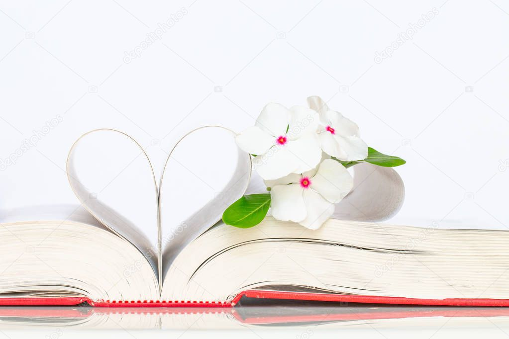 Pages of a book made into a heart shape and white flowers.