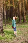 Chlapeček v příležitostných šatech na pozadí borovic v lese
