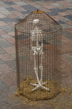 Human skeleton in a cage