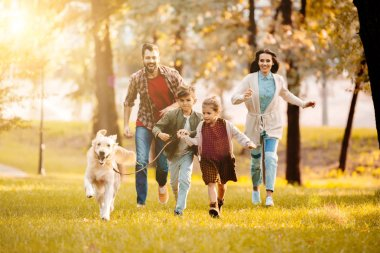 laughing family running with dog on meadow in park with setting sun behind
