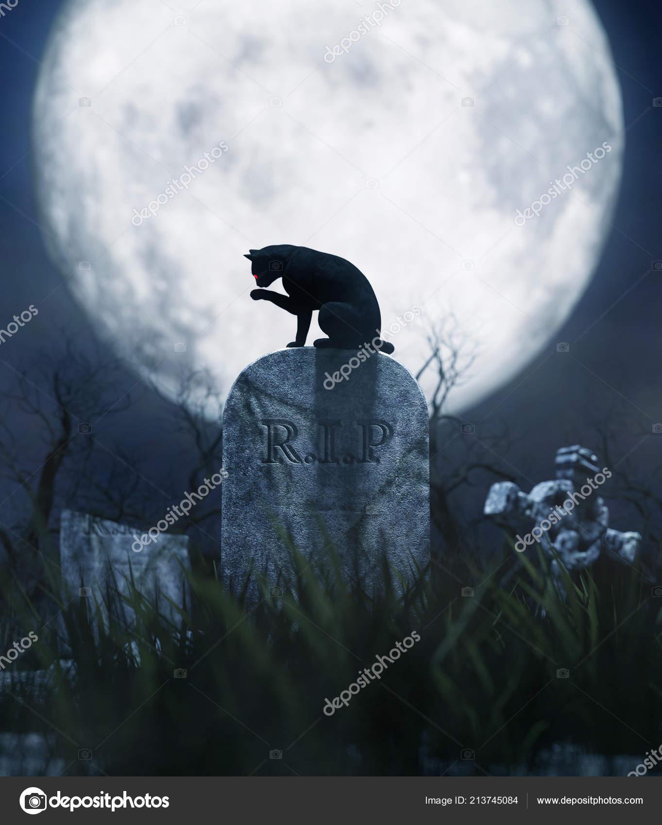 Черная Кошка Сидя Надгробие Ночь Хэллоуина Иллюстрация — стоковое фото