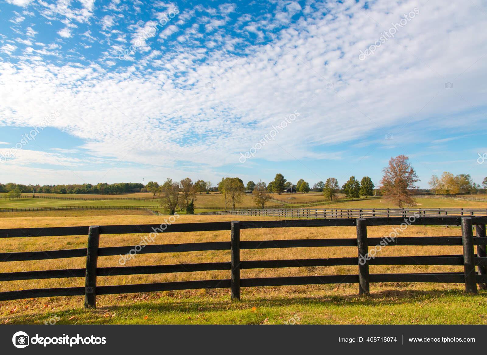 Beautiful Autumn Country Landscape Pastures Horse Farms Stock Photo C Volgariver 408718074