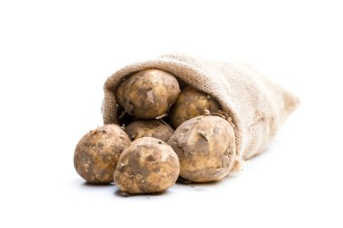 New potatoes  in sackcloth bag isolated on white