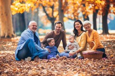 Multl generation family in autumn park having fun stock vector