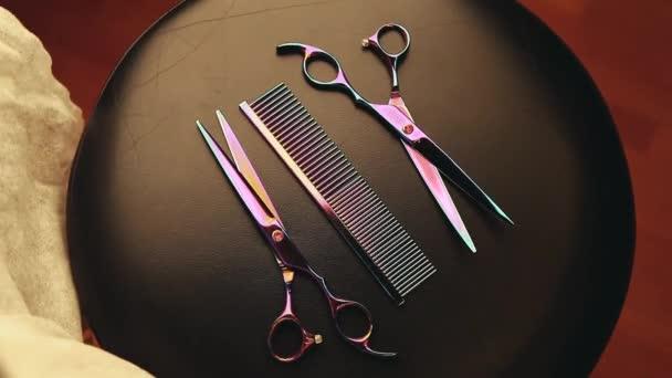 frizura eszközök olló stúdió