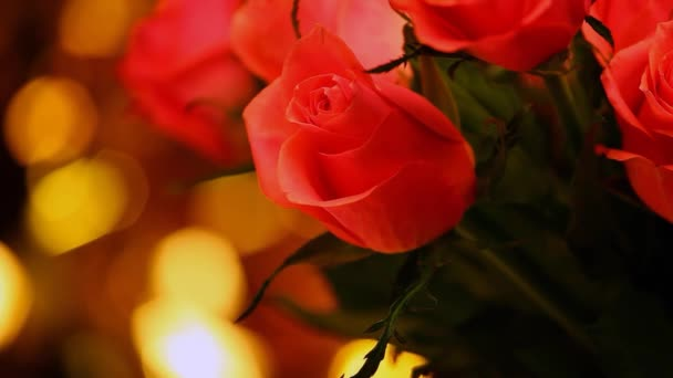 red rose gold bokeh