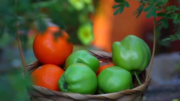 fruits basket summer garden footage