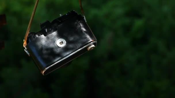 Retro fénykép fényképezőgép erdő