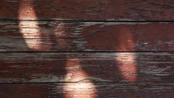 alte scharfe Tabelle Baum Schatten Herbst Garten hd Filmmaterial
