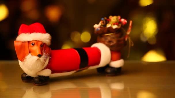 Santa Claus pes studio hd záběry