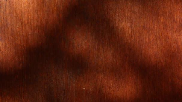 Dřevěný stůl strom stínu hd záběry