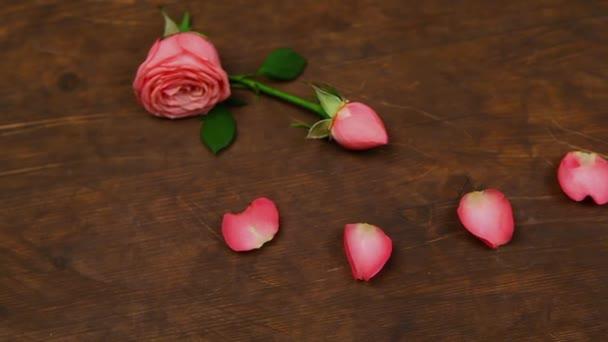 růžové okvětní lístek růže, dřevěný stůl hd záběry