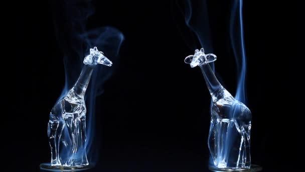 fumo di giraffa blu vetro scuro sfondo nessuno filmati hd