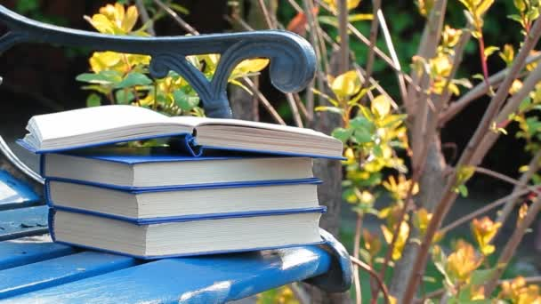 Book bench wind tree background nobody hd footage