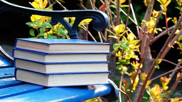 Buch Bank Wind Baum Hintergrund niemand hd Filmmaterial
