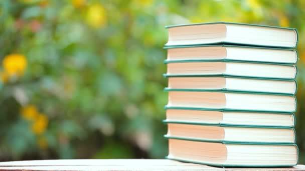könyv fa táblázat fa bokeh senki HD felvételeket