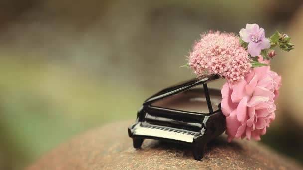 piano flower river background hd footage nobody