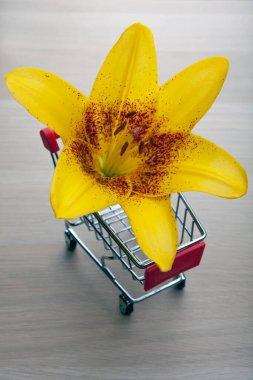 image of trolley flower wooden desk