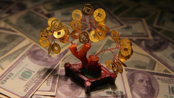 felvételek a fa pénz háttér