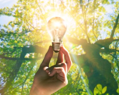 Hand holding light bulb with sunshine inside. Environment, eco technology and solar energy concept.