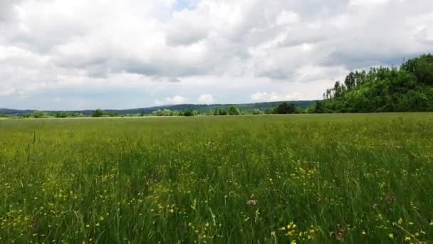 Rozlehlý horizont a otevřená pole s travou s větrem pohupování