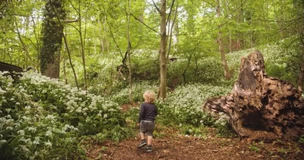 Chubby Toddler göndör hajjal sétál növények között az erdőben