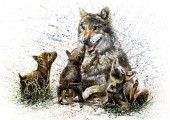 Vlčí rodiny akvarel na malířské divoké zvířata děti
