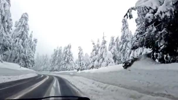 Pohled z auta na silnici mezi zasněženými stromy. Je čas zimy v českých horách