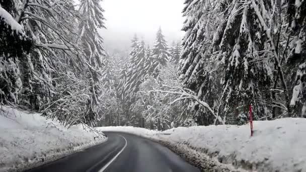 Zpomalený pohled z auta na silnici mezi zasněženými stromy. HD video zimy v českých horách. Je tu všude sněhu a silnice