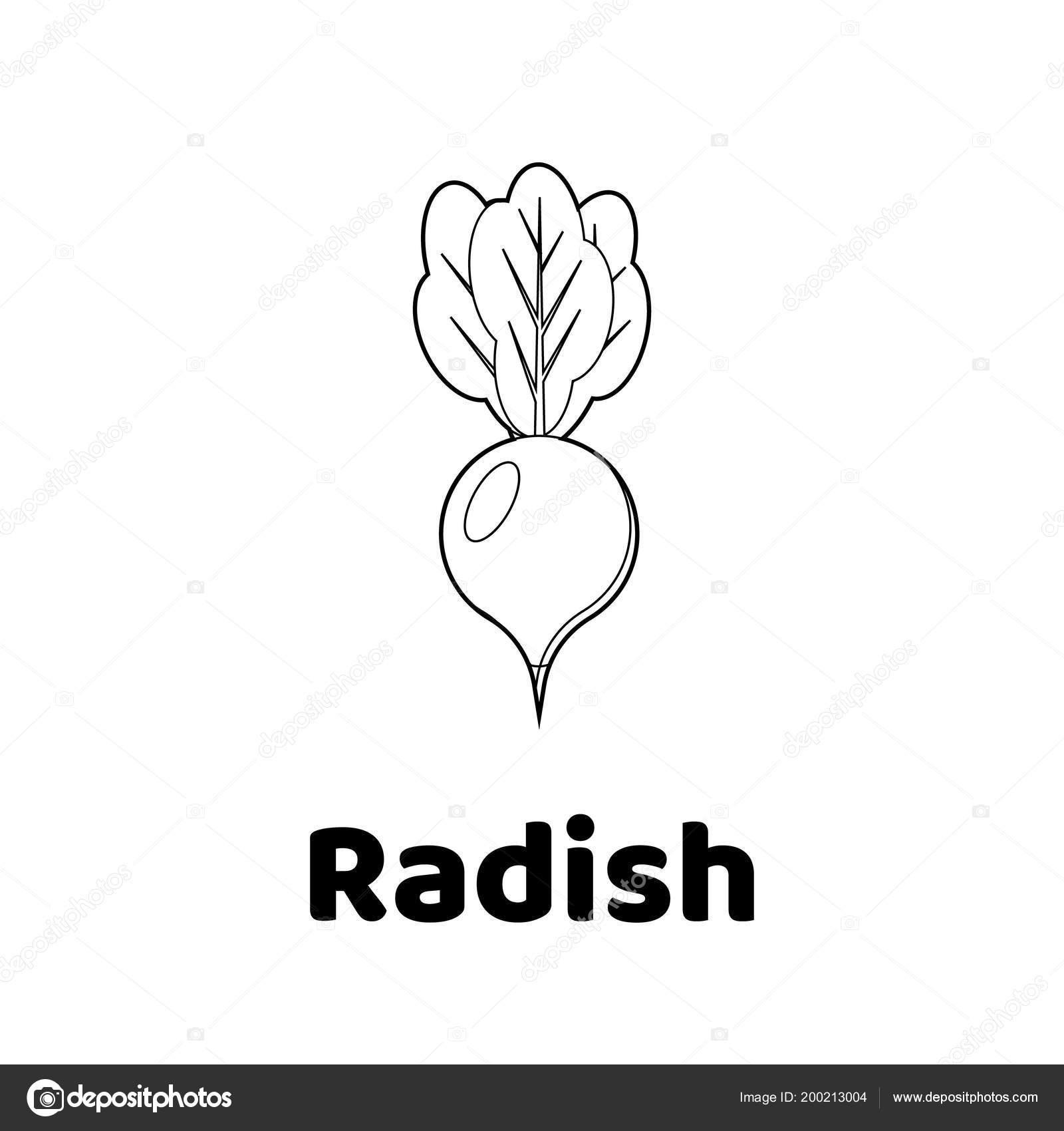 Resimde çocuklar Için Oyun Sebze Boyama Sayfası Turp Stok