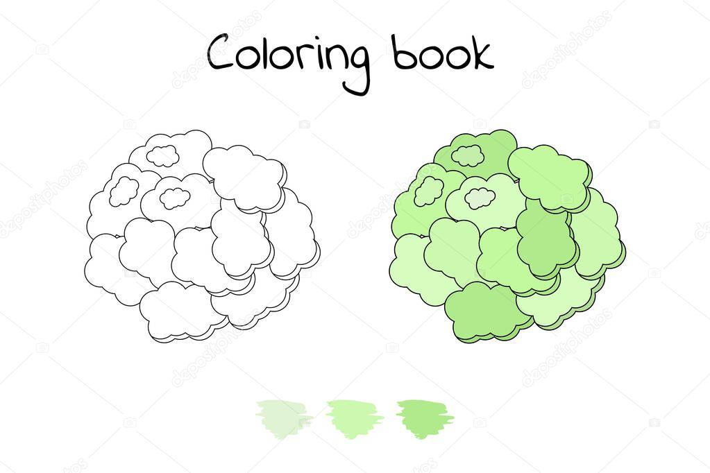 Resimde çocuklar Için Oyun Sebze Boyama Sayfası Karnabahar Stok