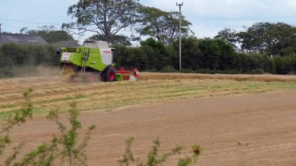 Irvine, Scotland, UK - July 21, 2020: A Lexion 620 by CLAAS brand harvester with APS type thresher and fitted with C450 collector on front. Professional straw processing required by many of Scotlands farmers at this time of year before winter.
