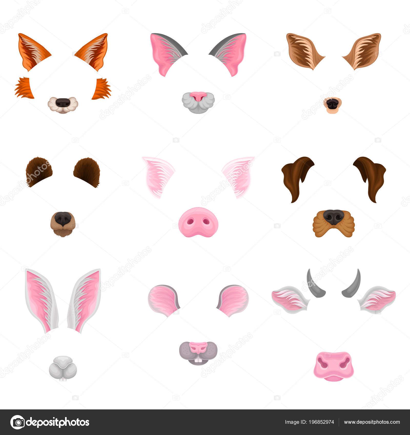 動物の顔 - 耳と鼻のフラットのベクトルを設定します。カラフルな