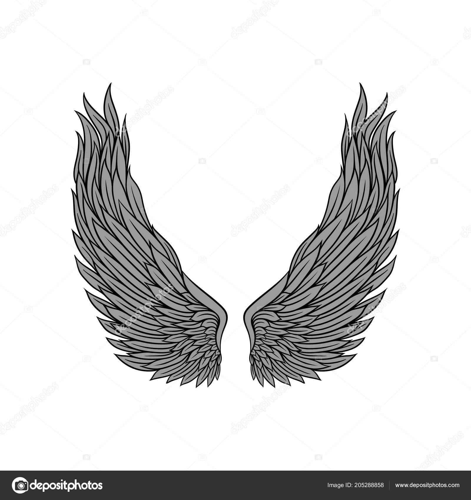 Skrzydła Anioła Duże Szare Pióra I Czarny Kontur Stary Szkoła