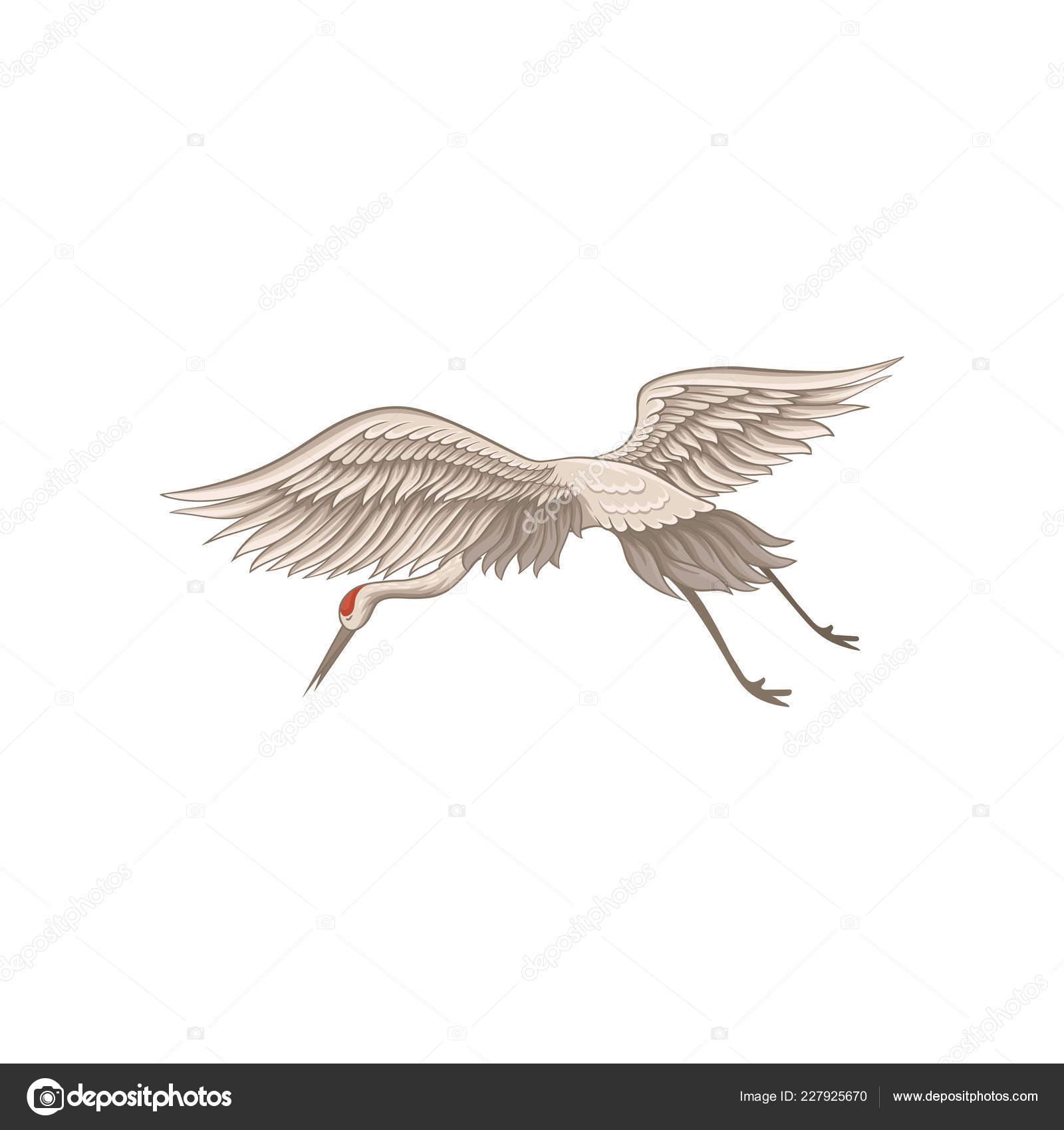μεγάλο πουλί σε δράση πίπα μαύρα κορίτσια