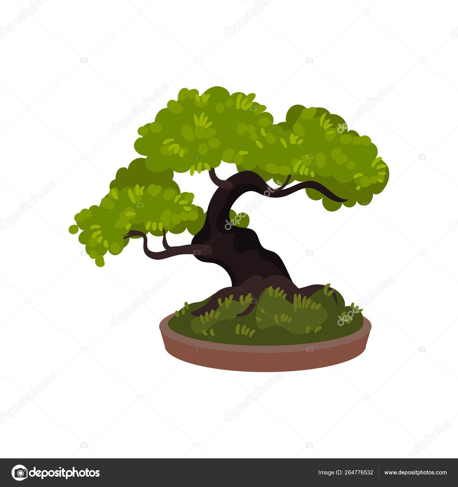 Bonsai Tree In A Pot Vector Illustration Stock Vector C Happypictures 264776532