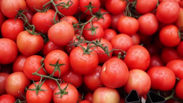 Reife rote Tomaten Hintergrund. Bio-Gemüse in den Regalen des Verbrauchermarktes