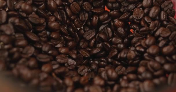 Premium Coffee Beans After Roasting, Ground in a Coffee Grinder. Stock Footage. Concept Start the Day with Coffee.
