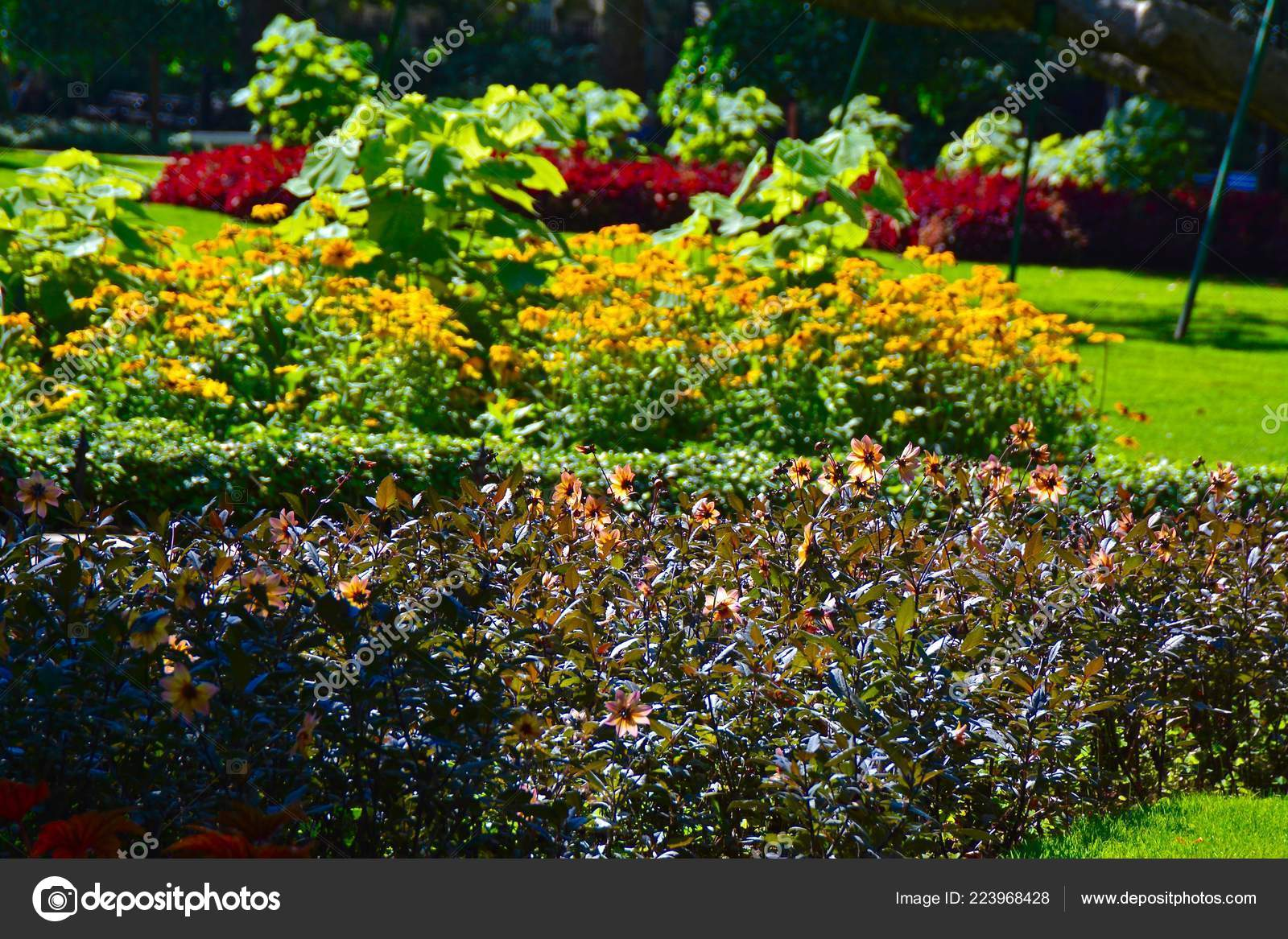Bright Summer Light Flower Garden London U2014 Stock Photo